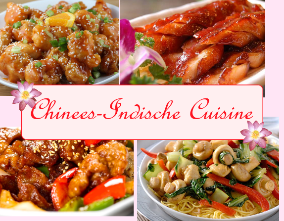 Lotus Giessen cuisine